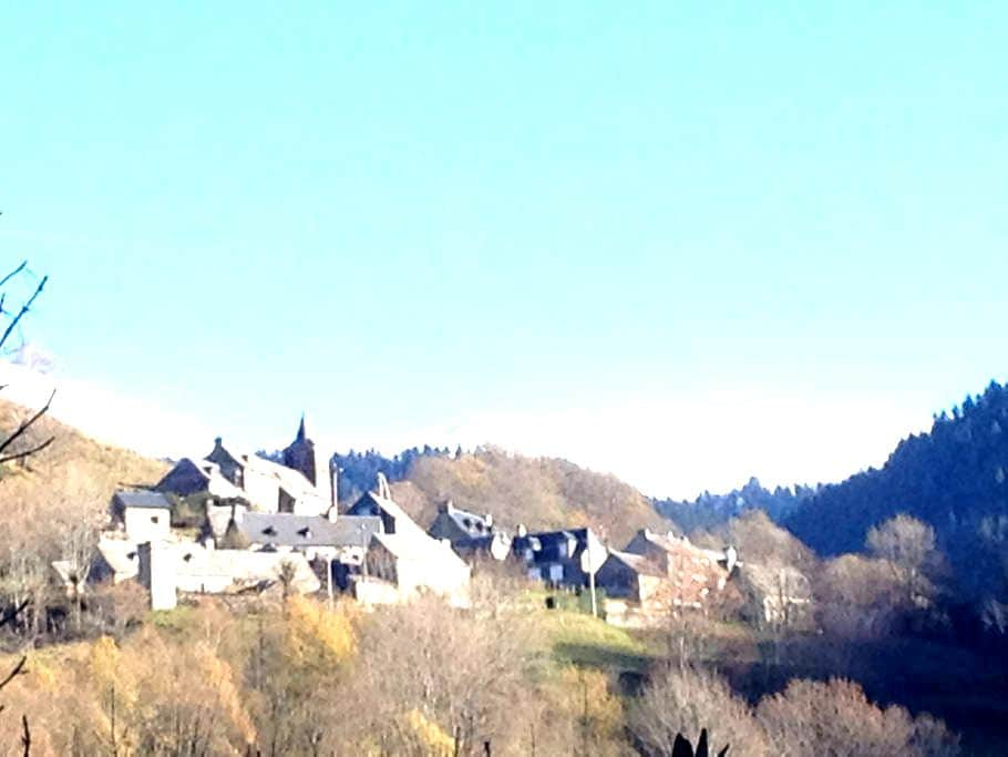 Petit chalet montagnard - Ardengost - House