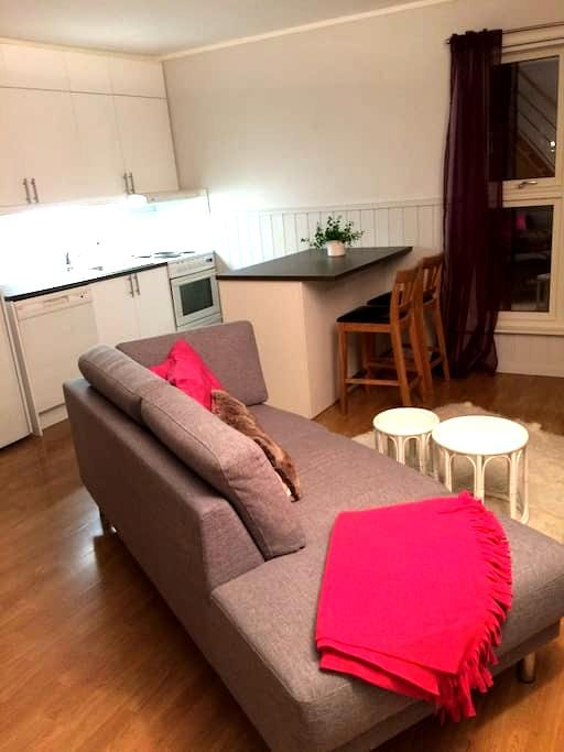 Central, modern, apartment with marvelous view - Tromsø - Wohnung