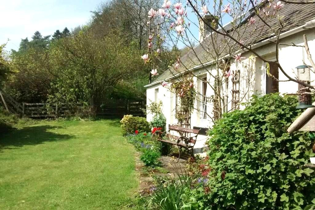 Cosy Country B & B (6 Guests) - Kinnaird - Bed & Breakfast