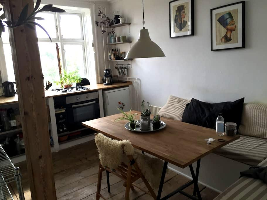Best location in Østerbro. Close to the center. - København - Apartment