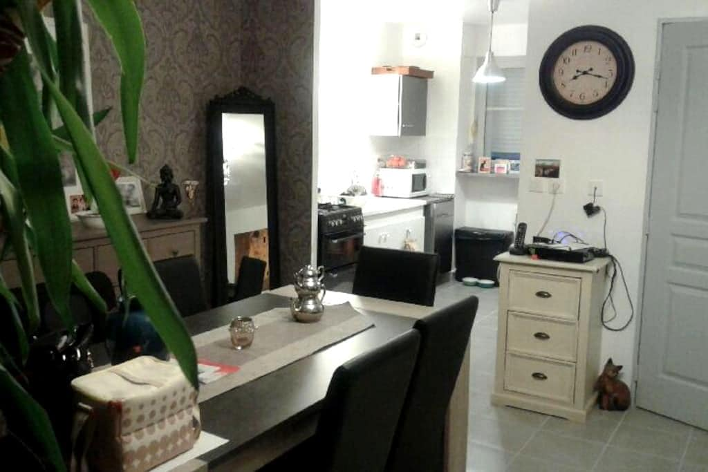 Chambre agréable et lumineuse - La Membrolle-sur-Choisille - Apartment
