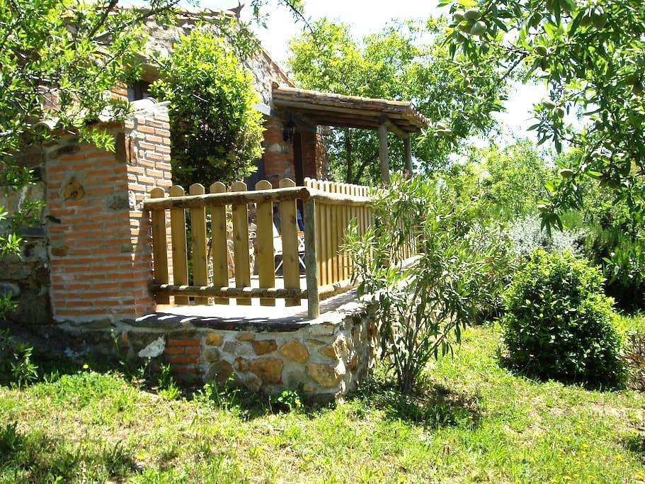 Small house Tajo Natural Park / Tae - Valencia de Alcántara