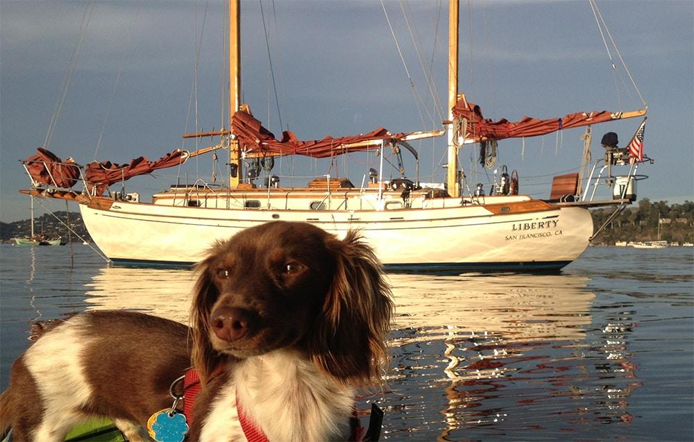 Liberty at anchor in Richardson Bay, Sausalito CA. Molly kayaking.