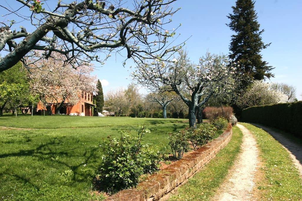 Villa i Noccioli - Capranica-scalo - 別荘