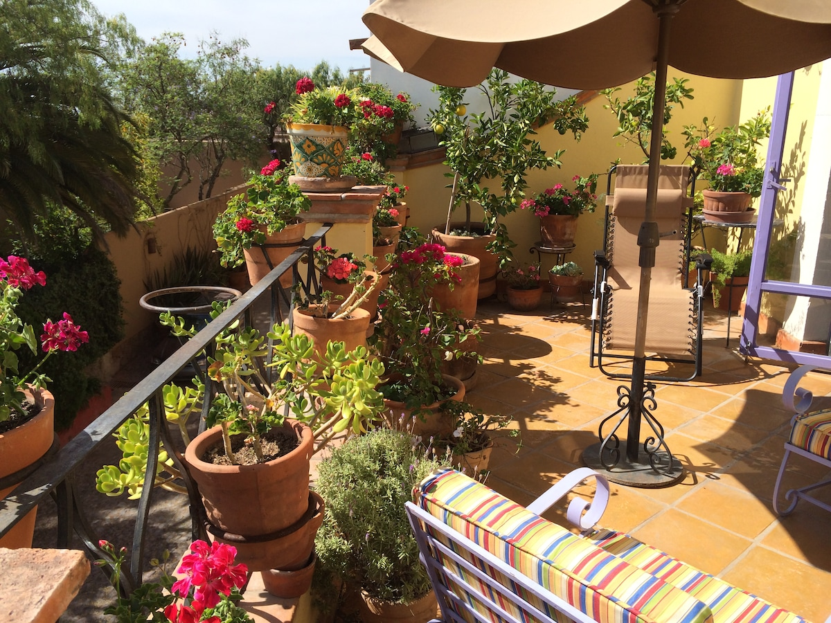 Flower filled upstairs terrace perfect for watching white faced Ibis fly over while sipping your margarita with friends.