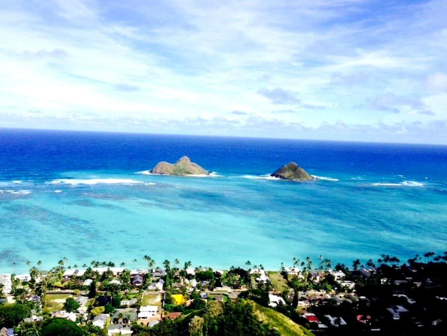 One bedroom in Kailua near beaches - Кайлуа
