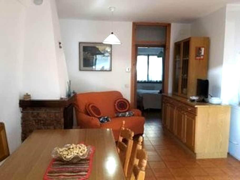 Cozy flat inside the Dolomite - Santo Stefano di Cadore - House