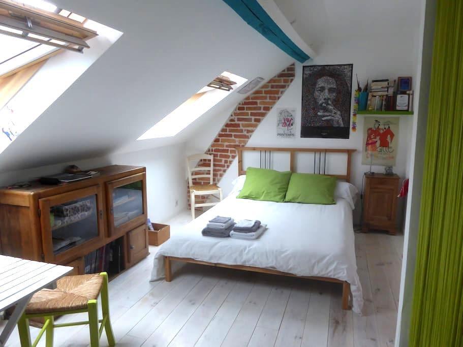 Chambre spacieuse Orleans-Sud Loire - Saint-Jean-le-Blanc - Dům