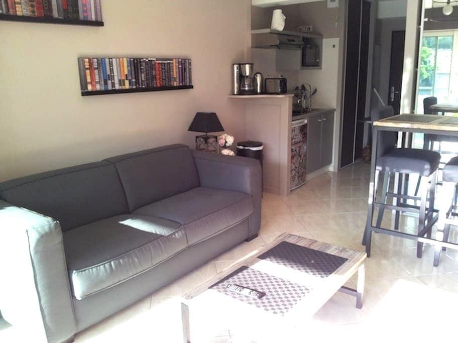 Joli et confortable studio - Anglet - Apartmen