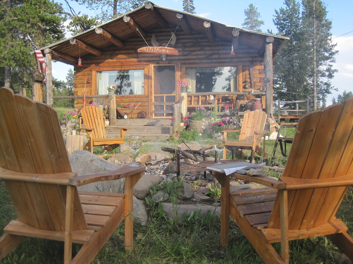 Secluded cabin experience