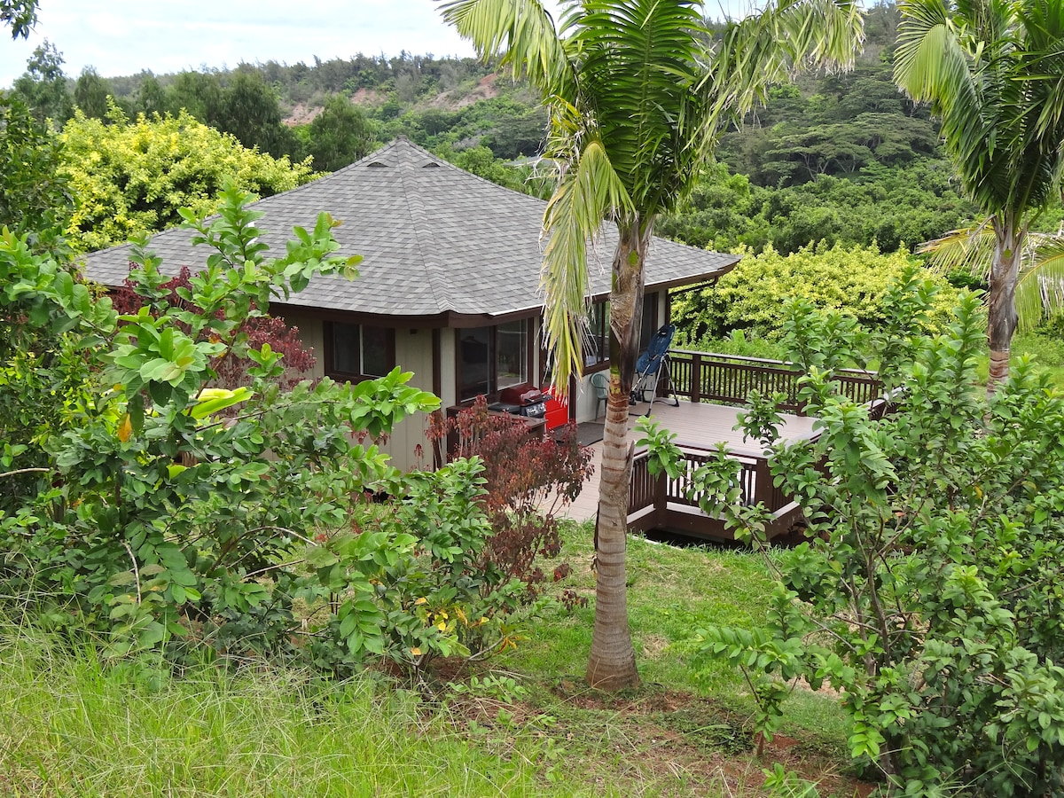 Hillside Bungalow