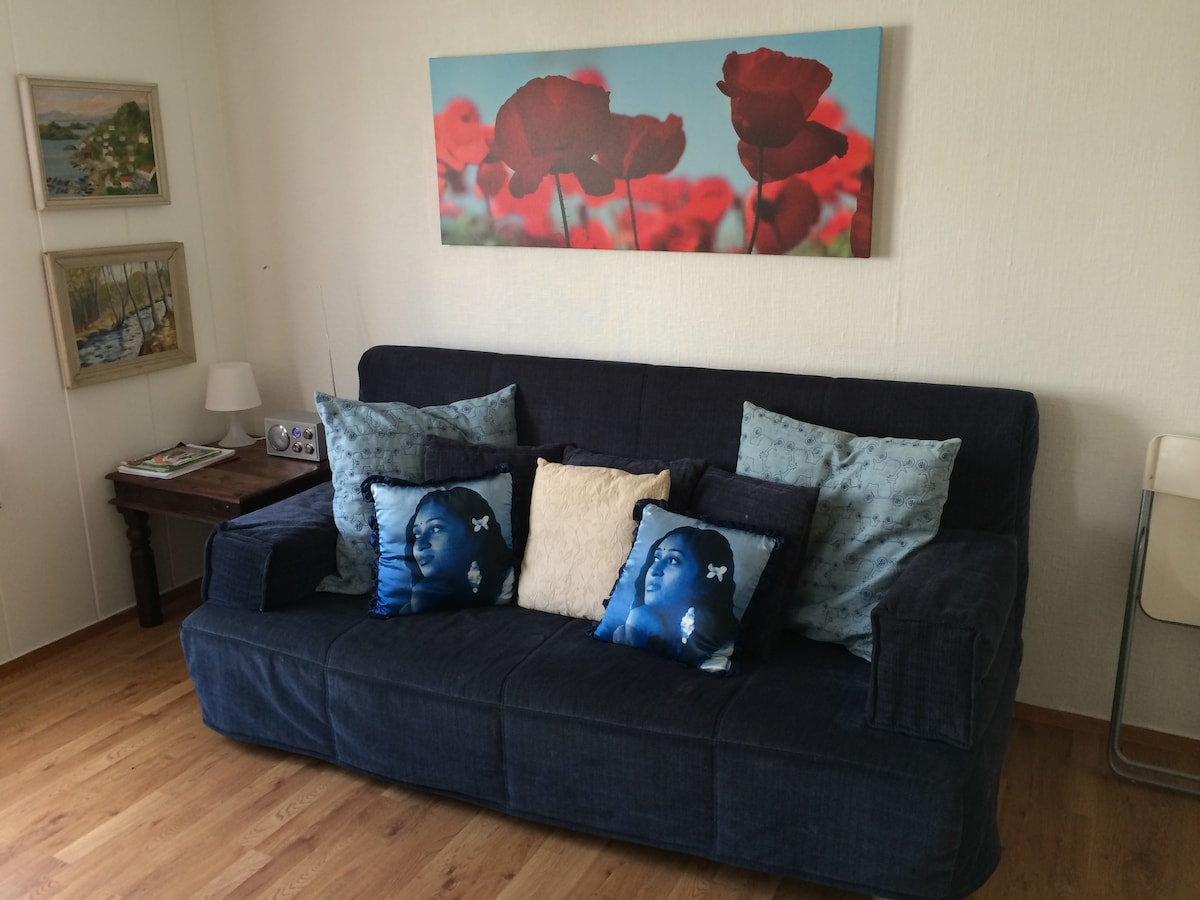 Extra Sofa in Living Room