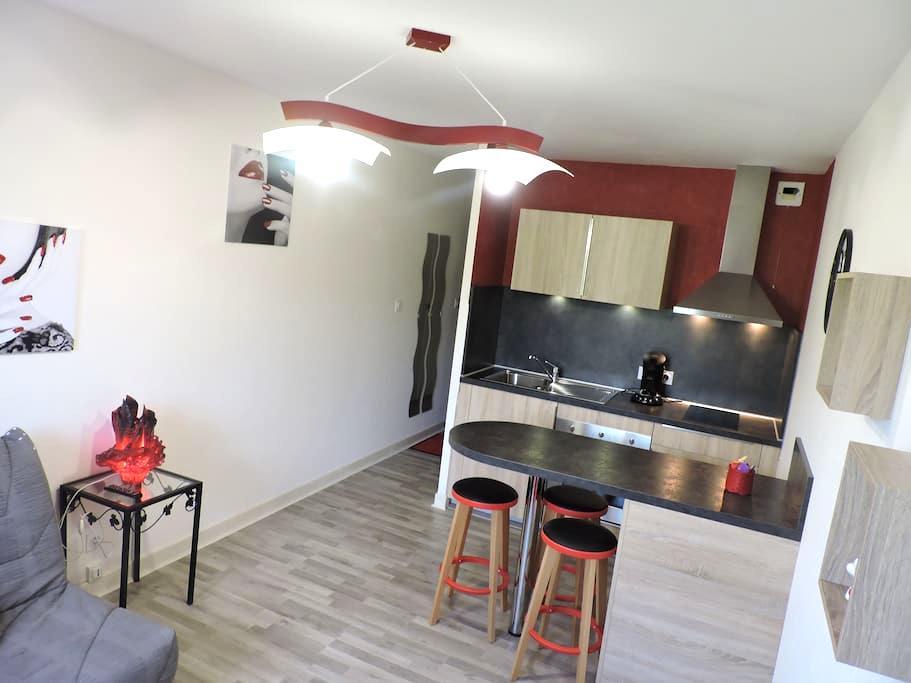 Beau studio a Vic sur cere - Vic-sur-Cère - Apartamento