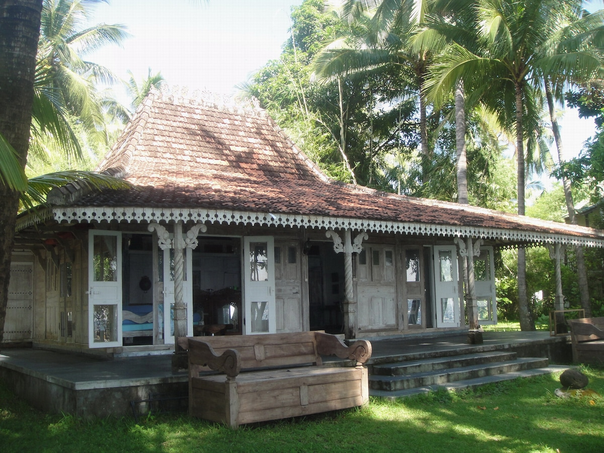 Jomaro...a traditional Javanese house where your adventure begins.