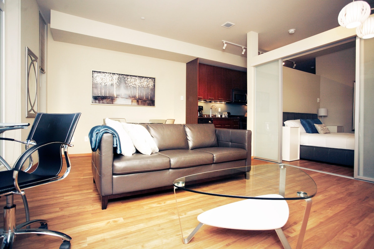 Modern 1Bed - Convention Center