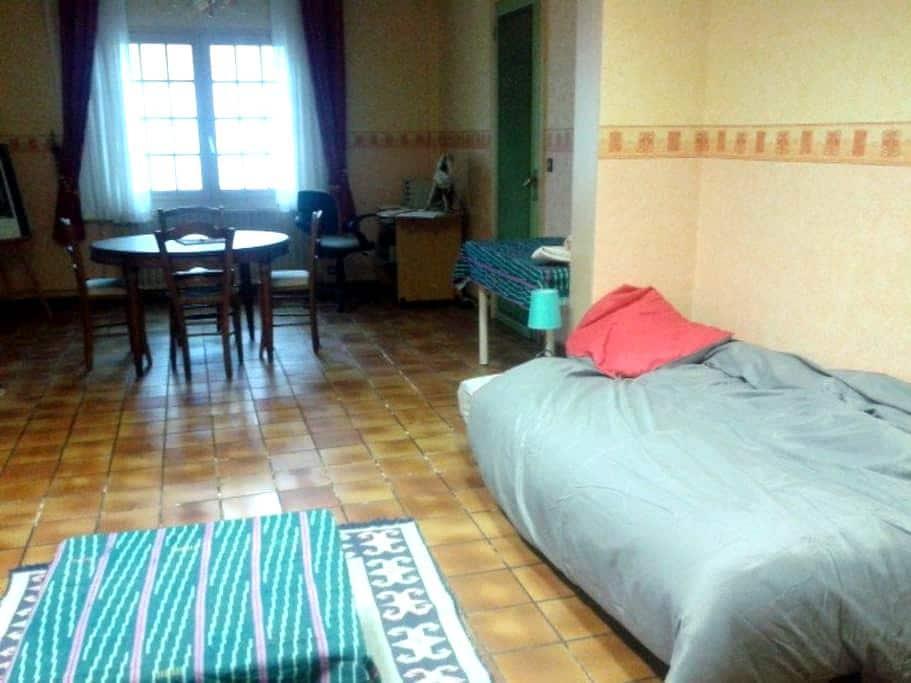 grande chambre dans maison avec jardin - Carvin - House
