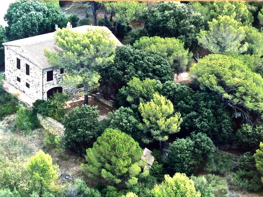 Maison cévenole sur terrain boisé - Bagard - Huis