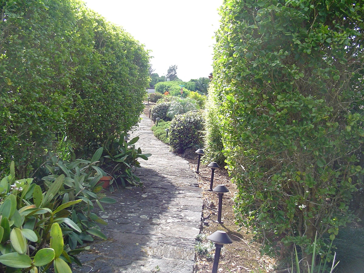 Walkway to Maile Land