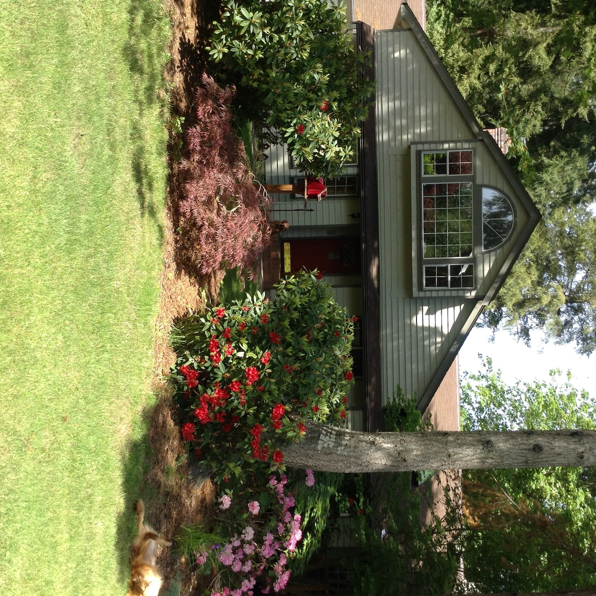 Cozy house in Gig Harbor