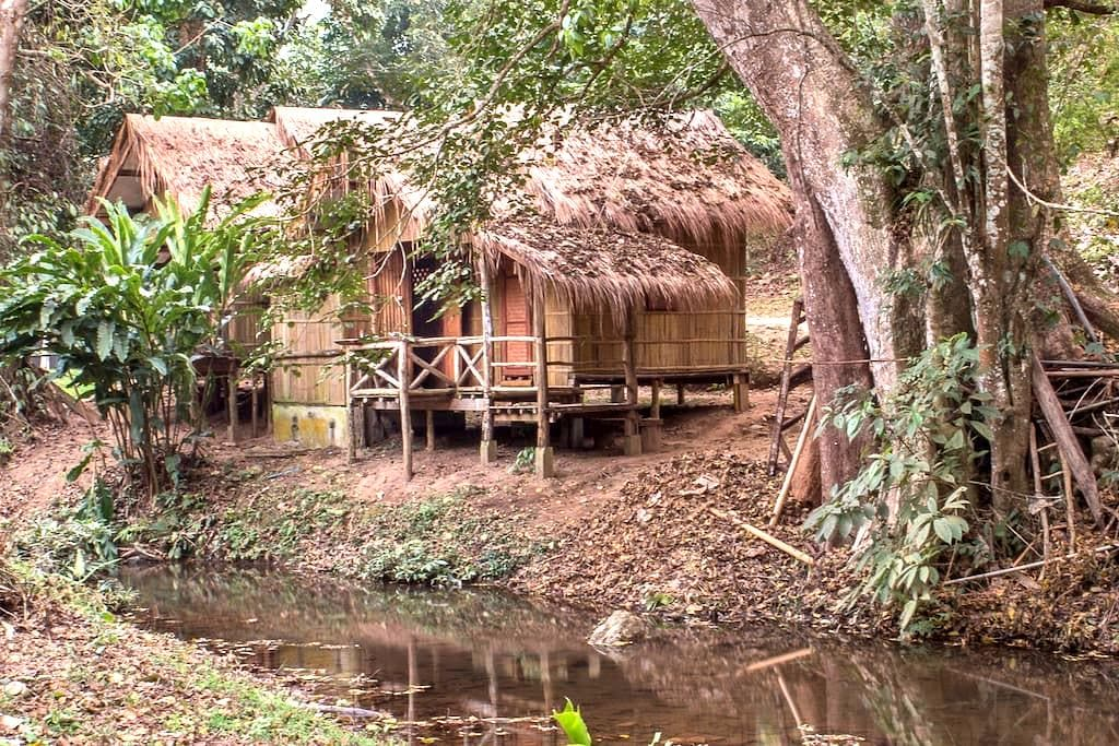 DreamCaught Treehouses - Riverfront Cabin 1 - Mae Taeng - Cabin