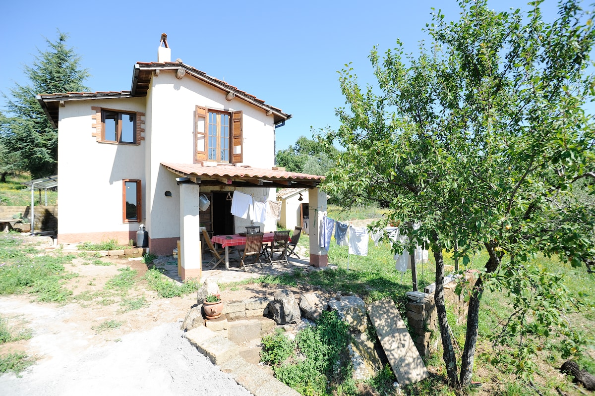 Country Haven among Olive Trees