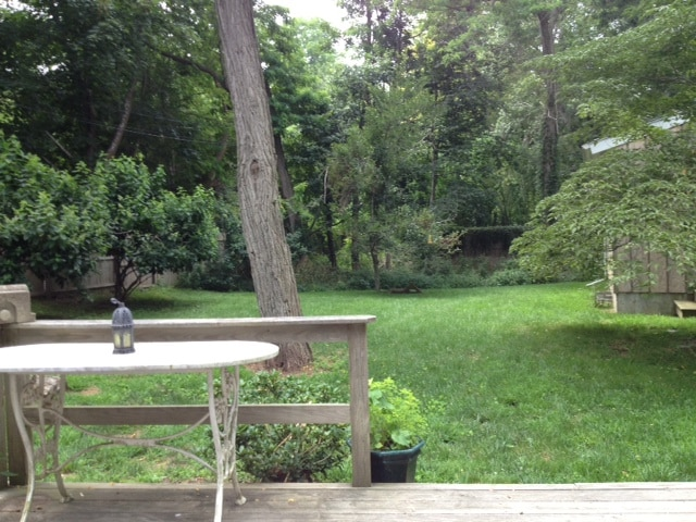 View of the backyard from the deck.