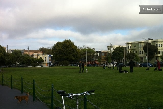 This is Duboce Park and is another park near us. Between Lower Haight St. and the Castro area.