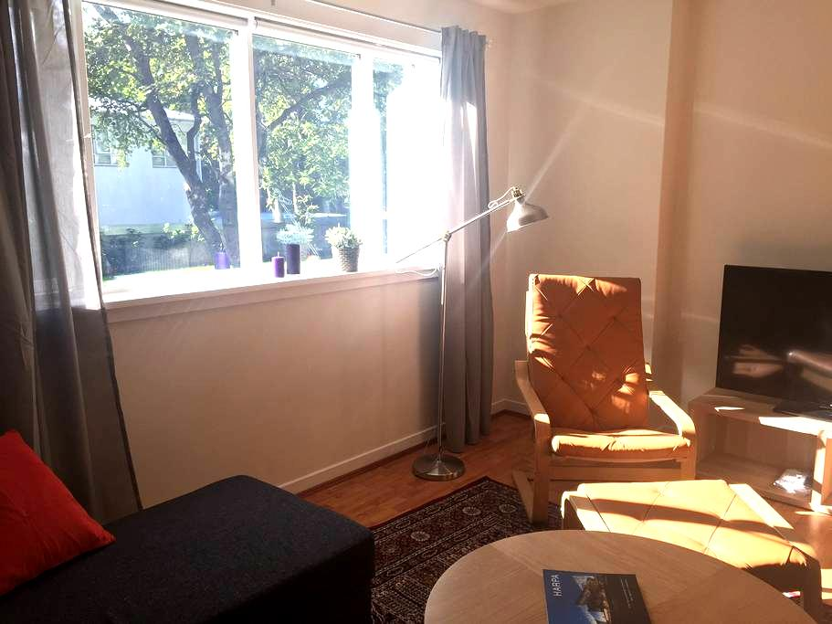 Newly renovated ground floor apartment #101 - Reykjavik - Appartamento