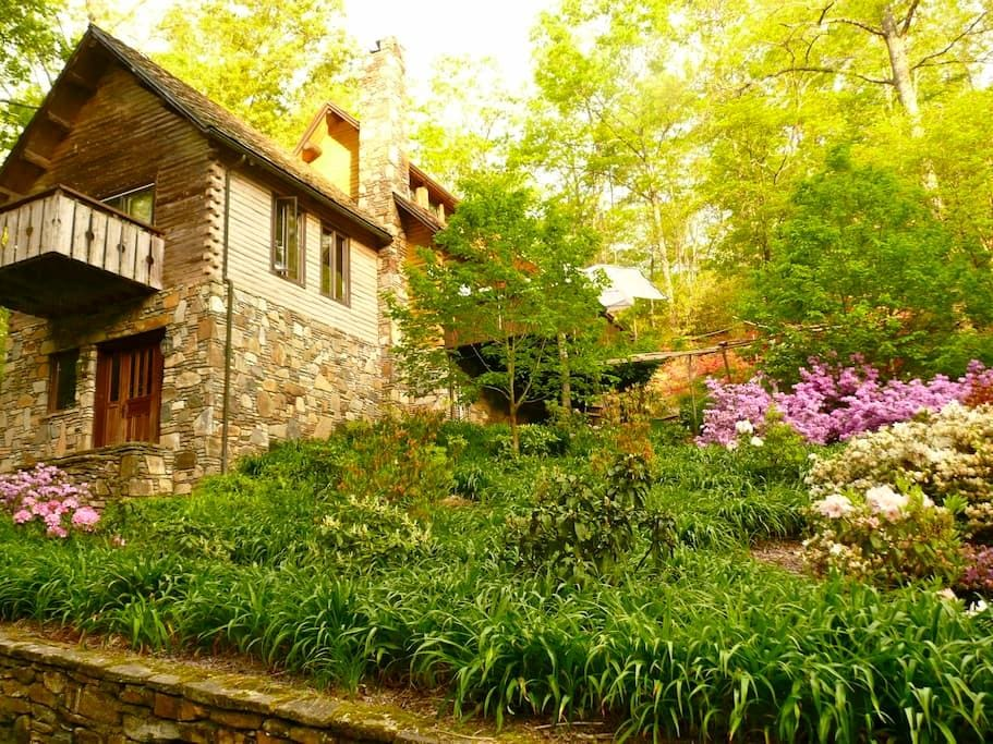 Green living in quiet setting. - Lake Toxaway - House