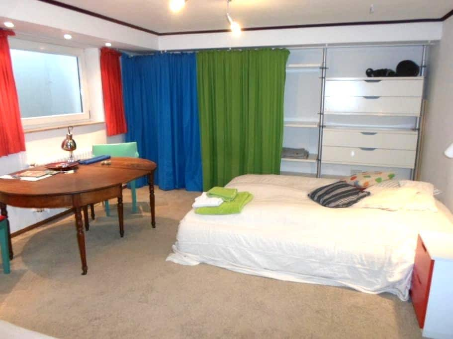 großes, gemütl.ruhiges Zimmer-Appartment. - ハイデルベルク