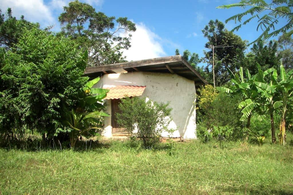 Casa el Sol - Granada - Maan sisään rakennettu talo