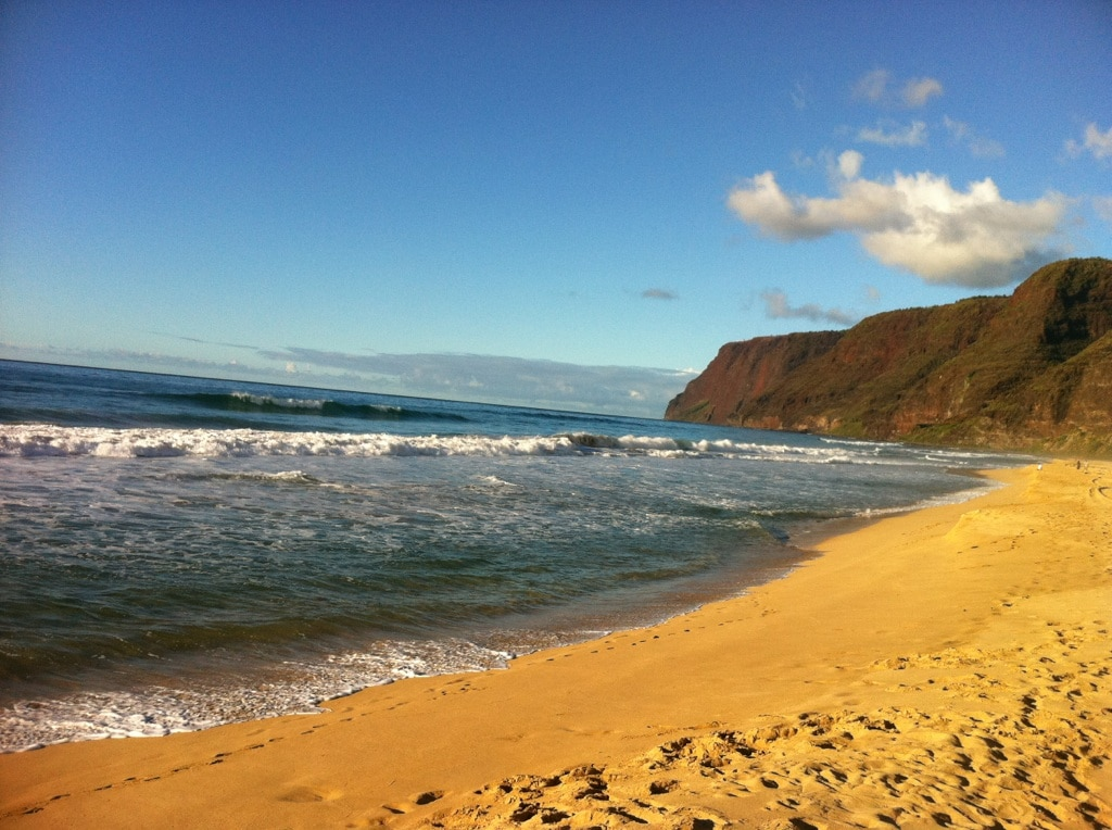 ... the wide sand beaches and dynamic waves  of Polihale can be accessed... end of the road...west side