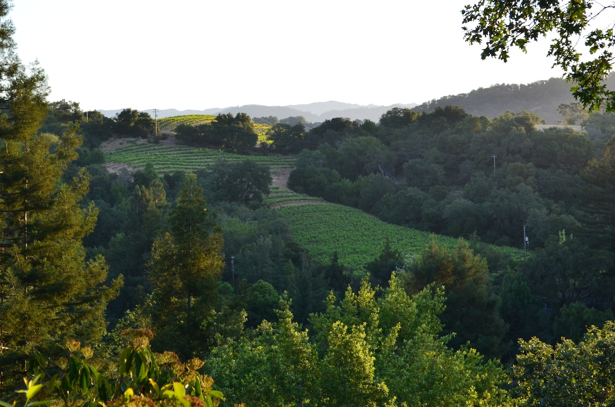 View from deck of vineyards, hills and river.