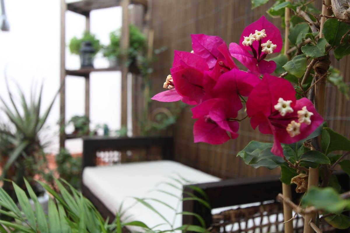 ★★★★★ Double Bdr, lovely terrace