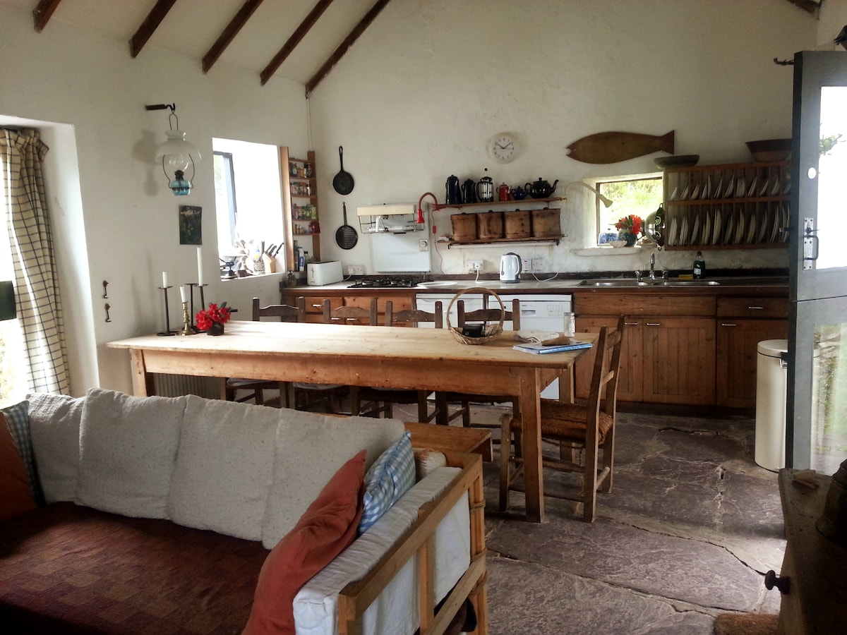 Kitchen/living room in the original old farmhouse