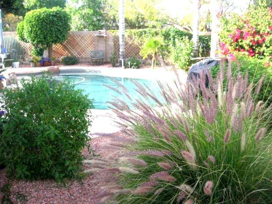 Charming House 1 in secluded street - Chandler - House