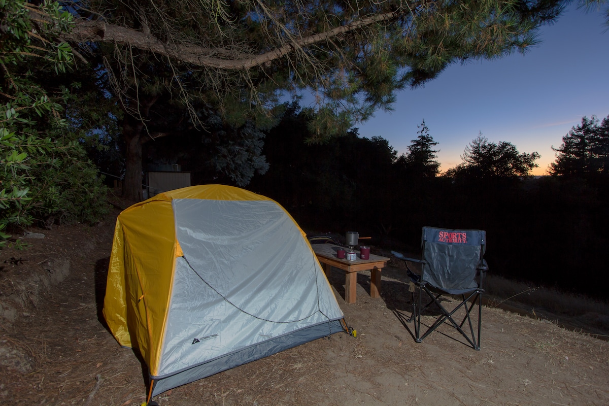 Camping on our beautiful land #2
