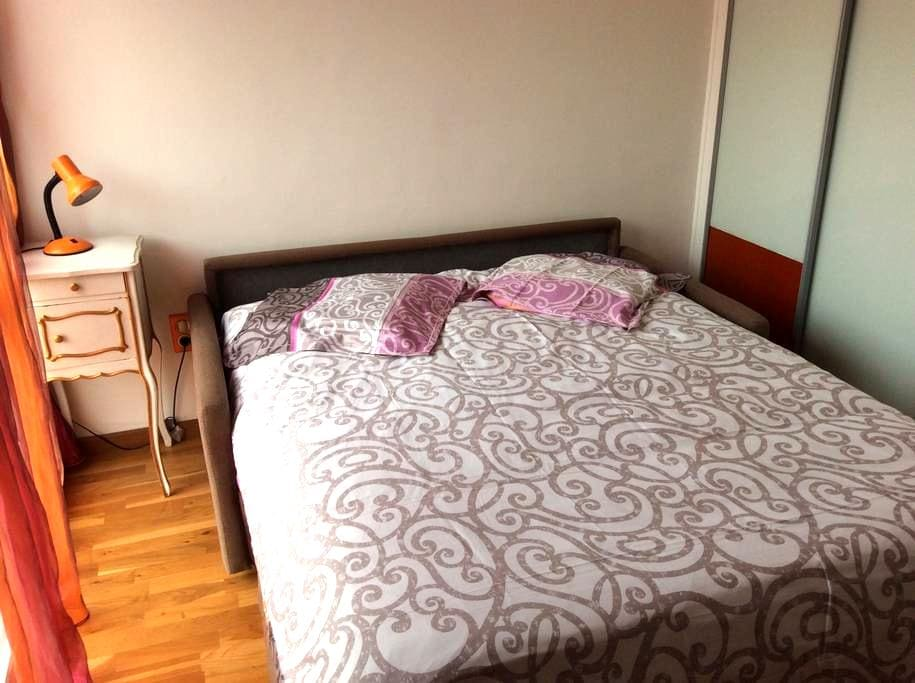 Room in a comfortable apartment - 克拉马尔(Clamart) - 公寓