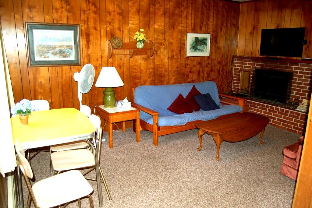 Charming one bedroom flat at Viking Village. - Washington
