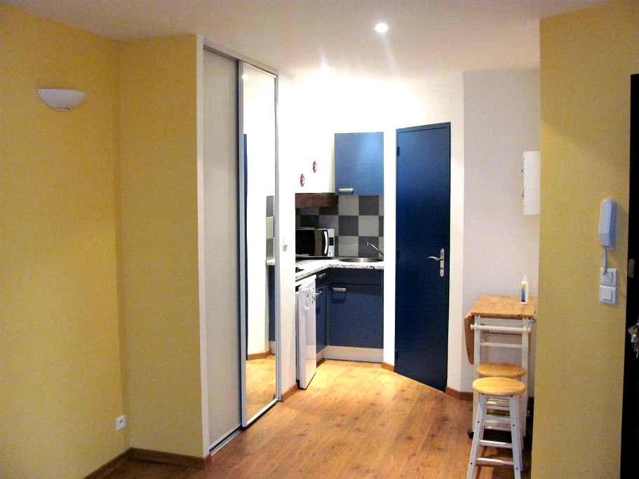 Studio cosy en cent. ville de RODEZ - Rodez - Lägenhet