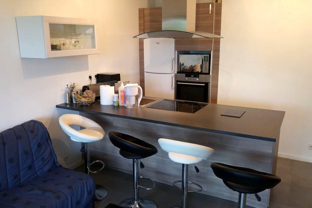 Appartement rénové avec terrasse-Quai Métayer - Niort - Byt