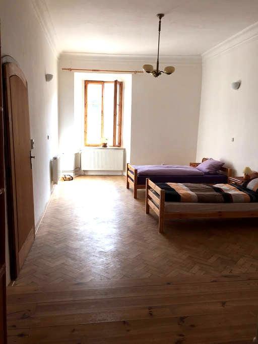 Zimmer für Drei in gotischem Haus in Slavonice - Slavonice - (ไม่ทราบ)