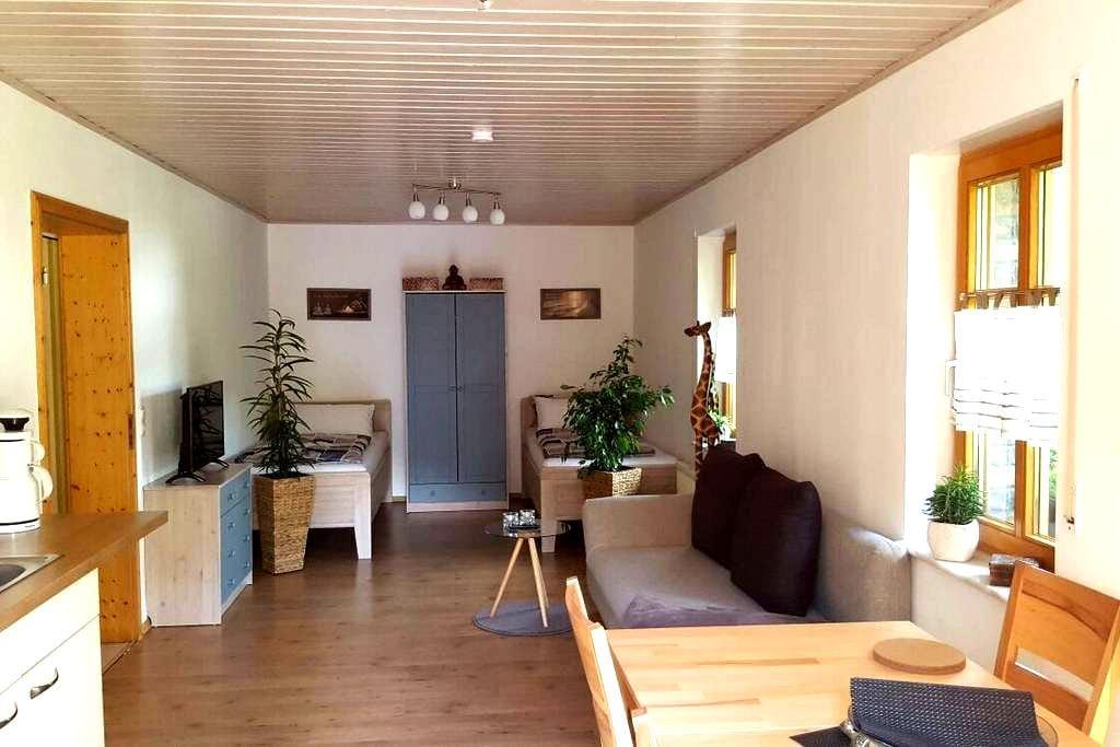Gemütliche Ferienwohnung in Niederfischbach - Niederfischbach - Kondominium