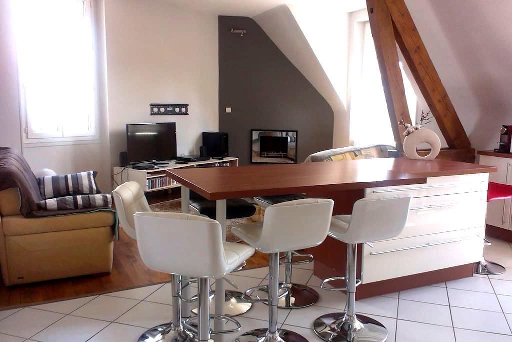 appartement Blois-Chambord - Blois - Wohnung