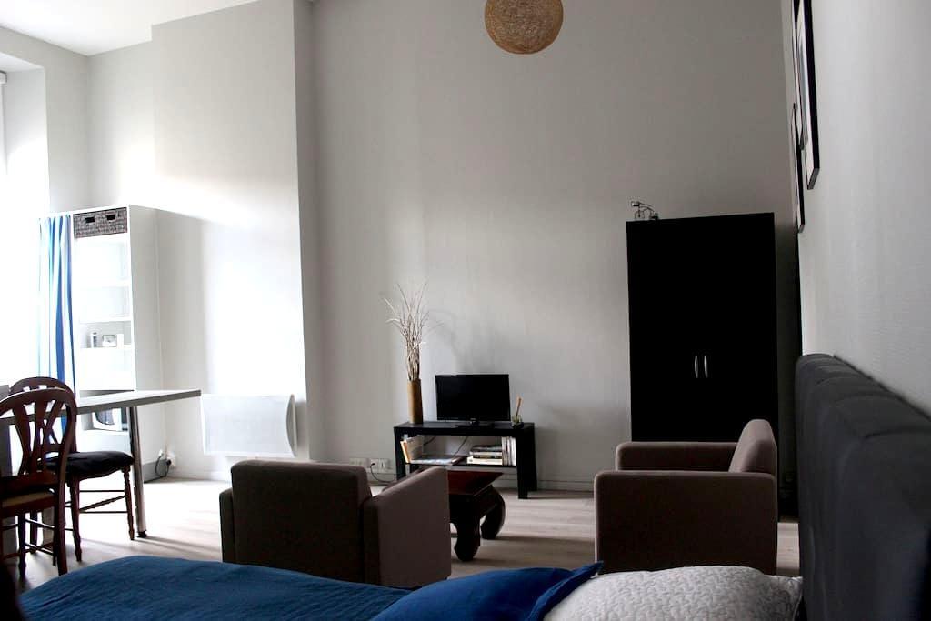 Studio meublé  hypercentre Rochefort - Rochefort - Apartment