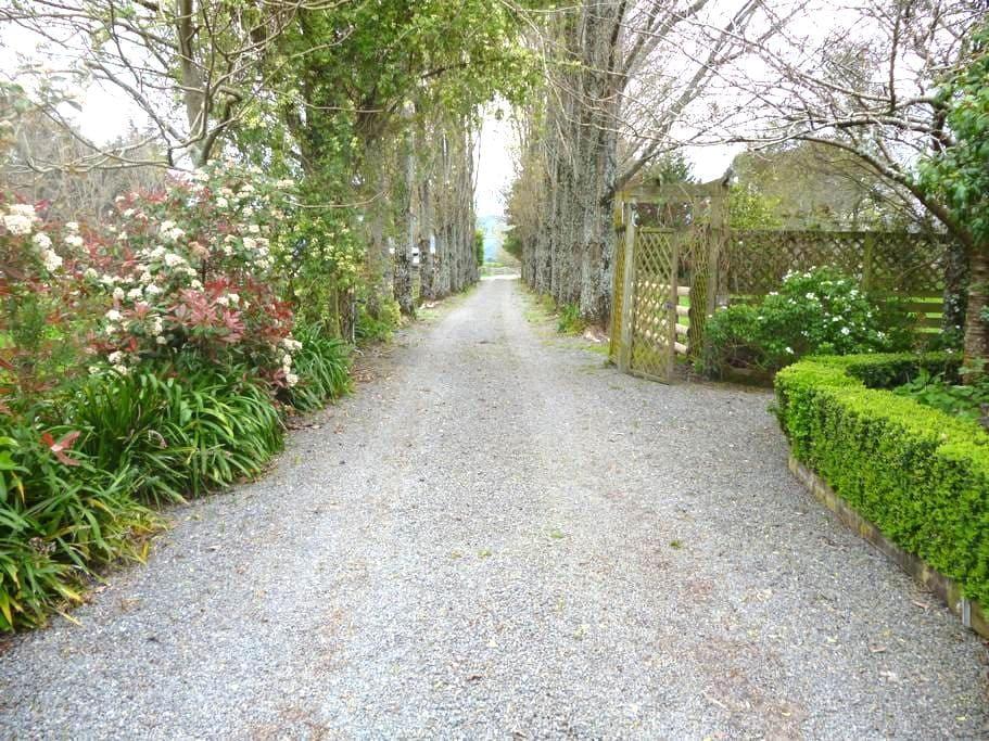 Aratahi Cottage - Carterton
