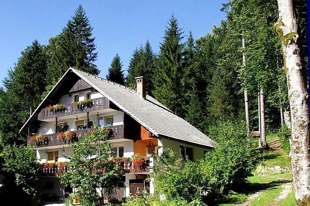 Apartments & room Destina Bohinj 2 - Ribčev Laz