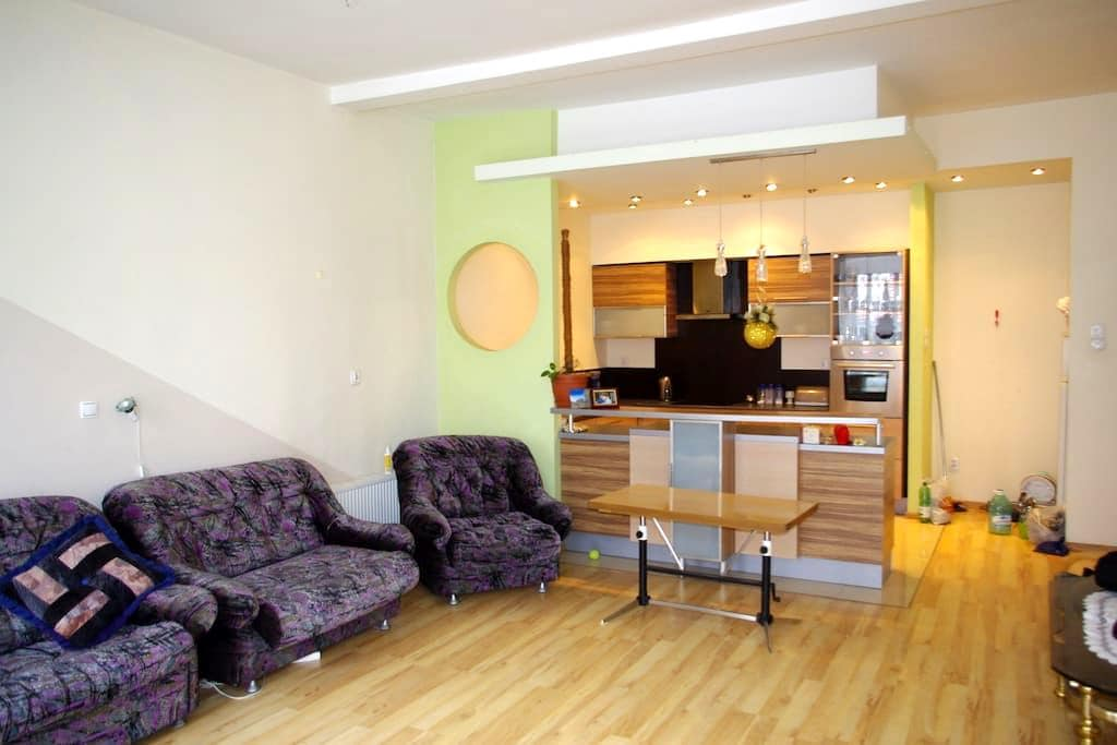 BEAUTIFUL, spacious apartment for 5-6 people - Brzeg