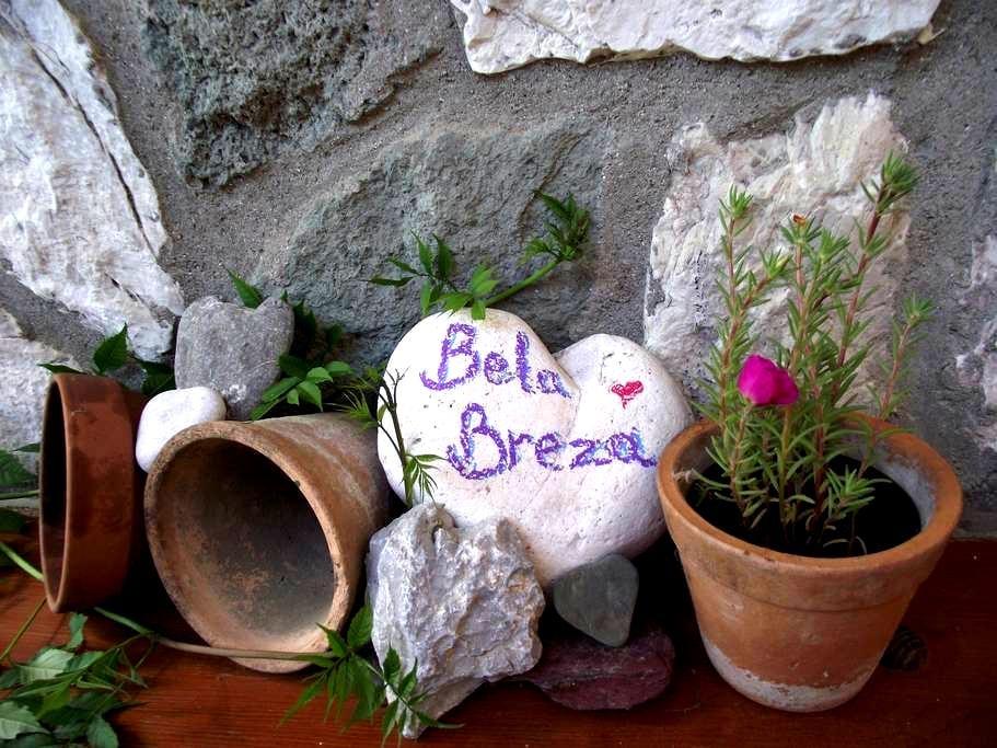 Bela Breza; The Perfect Mountain Escape - Mozirje - Apartamento