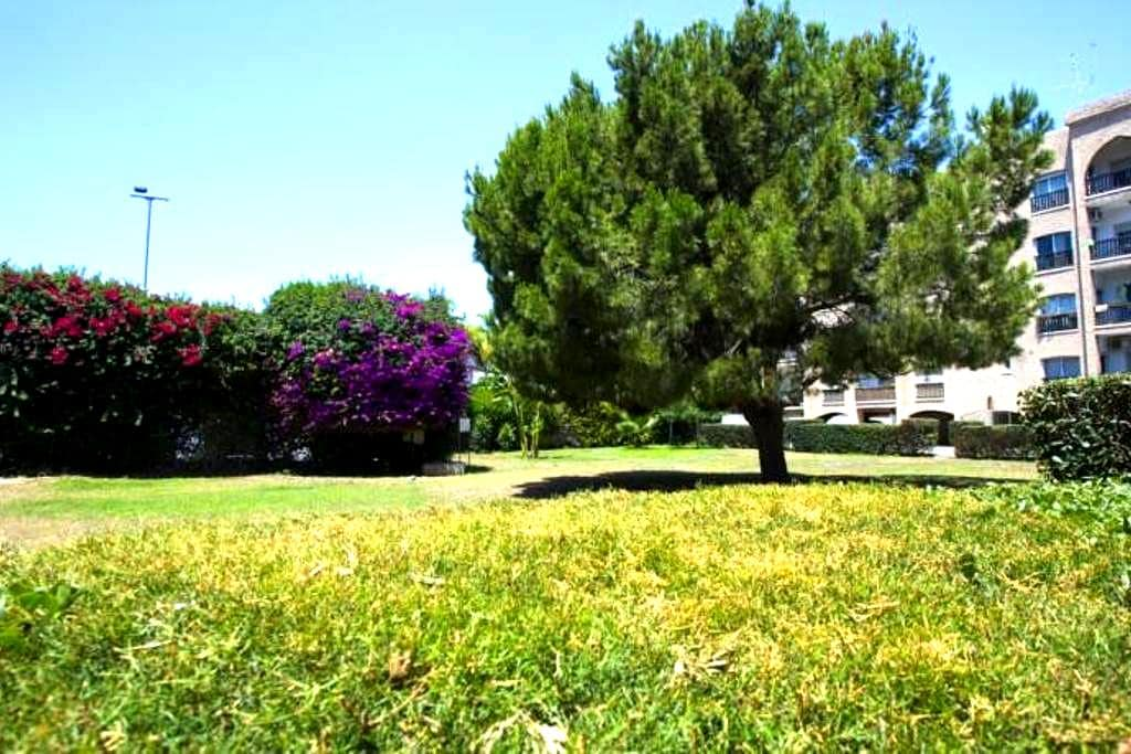 Limassol Holiday Apartment - Limassol